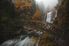 A bridge in the Forest by Enrico Fossati #xemtvhay