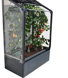 STC Lean To Mini Greenhouse Vegetable Grower