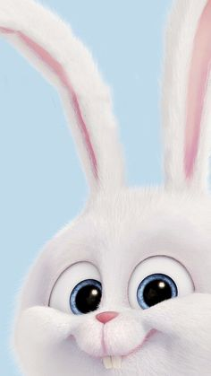 snowball rabbit wallpaper ~ with rabbit . with rabbit alice in wonderland . with rabbit costume . Wallpaper Iphone Liebe, Cartoon Wallpaper Iphone, Disney Phone Wallpaper, Cute Cartoon Wallpapers, Cute Wallpaper Backgrounds, Pretty Wallpapers, Cellphone Wallpaper, Easter Backgrounds, Rabbit Wallpaper