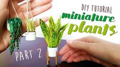 Hanging Plants, Indoor Plants, Flower Crafts, Craft Flowers, Miniature Plants, Parts Of A Plant, Diy Tutorial, The Creator, Paper