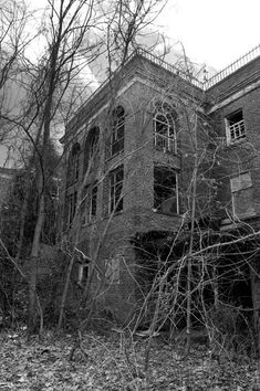 Arched Windows - Photo of the Abandoned Glenn Dale Hospital Scary Places, Haunted Places, Places To See, Abandoned Asylums, Abandoned Places, Old Buildings, Abandoned Buildings, Asile, Ghost And Ghouls