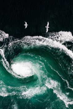 Saltstraumen - Nordland - Norway | Thomas Kleine