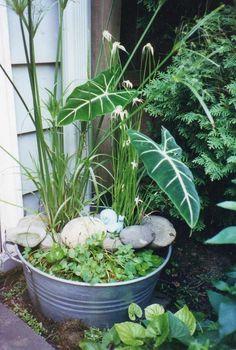 runder Zinneimer bepflanzen und dekorieren