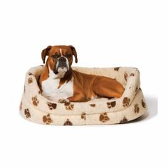 At Paws Plus One we know one size or type does not fit all. We strive to supply the best collection Big Dog Beds, Cool Dog Beds, Large Dogs, Small Dogs, Dog Couch, Dog Varieties, Dog Blanket, Sleeping Dogs, Dog Care