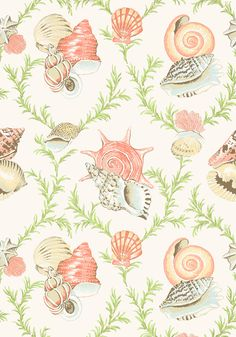 SUMBA SHELL, Cream,  T5745, Collection Biscayne from Thibaut Two of my favorite things. Toile and seashells