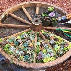 What an amazing gardening idea! | Deloufleur Decor & Designs | (618) 985-3355 | www.deloufleur.com #GardenIdeas