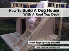 Pinterest Dog Houses Build A Dog House And Diy Craft Projects