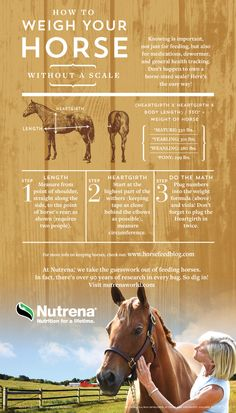 Cargill_Equine_2015_HowToWeighHorseWOScale_8.25x12_4c_rsp_r2b_LONG