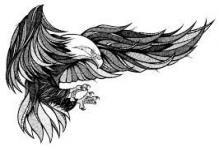Landyachtz // Longboard Graphics // 2013 on Behance – AC – Owls & Birds – Tatuagem Eagle Wing Tattoos, Eagle Chest Tattoo, Tattoo Eagle, Trendy Tattoos, Tattoos For Guys, Cool Tattoos, Tattoo Sketches, Tattoo Drawings, Body Art Tattoos