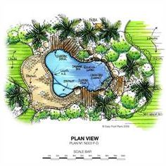Pool Plans Swimming Pool Design On Pinterest Swimming Pool Designs