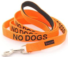 NO DOGS Orange Color Coded 6 Foot Padded Dog Leash (Not Good With Other Dogs) PREVENTS Accidents By Warning Others of Your Dog in Advance -- See this great product. (This is an affiliate link and I receive a commission for the sales) Orange Color Code, Pet Dogs, Pets, Doggies, Best Dog Training, Foot Pads, Dog Agility, Outdoor Dog, Cat Collars