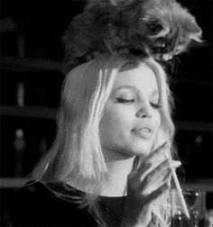 """gulcayn: """" daphne's dior addict commerical was so cute """" Greg Kadel, Crazy Cat Lady, Crazy Cats, Cosmopolitan, Daphne Groeneveld, Dior Addict, Gifs, Animation, New People"""