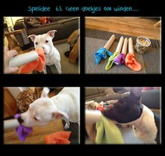 Use pvc instead of cardboard tube and have a long string of fabric so as it's pulled out treats intermittently fall Homemade Dog Toys, Diy Dog Toys, Brain Games For Dogs, Dog Games, Dog Boredom, Dog Enrichment, Dog Puzzles, Hiking Dogs, Dog Activities