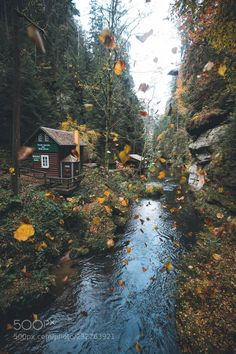 The autumn in a beautiful gorge - # autumn # gorge # BEAUTIFUL - Herbst - Natur Autumn Aesthetic, Autumn Cozy, All Nature, Autumn Nature, Autumn Trees, Cabins In The Woods, Fall Halloween, The Great Outdoors, Nature Photography