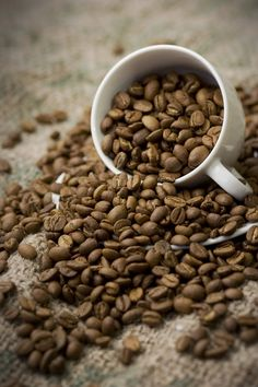 Coffee Beans 1 by sugendran on DeviantArt
