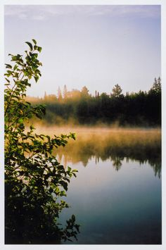 Sunrise (Algonquin Park, Ontario) by The Bees