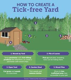 5 Ways To Get A Tick-Free Yard—And Simple Ways To Protect Your Pets From The Pests  http://www.rodalesorganiclife.com/home/5-ways-to-get-a-tick-free-yard-and-simple-ways-to-protect-your-pets-from-the-pests?cid=OB-_-ROL-_-MSSF