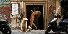 LA+MORTE+E+LA+FANCIULLA+zilda+naples+street+art.jpg 950×477 pixels