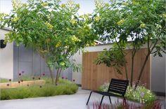 STUDIO VERDE | Berwout Dochy | tuinarchitect | tuinarchitectuur | landschapsarchitect | landschapsarchitectuur | West-Vlaanderen | Roeselare | Rumbeke | Izegem | bureau tuinarchitectuur | buro tuinarchitectuur | tuinontwerp
