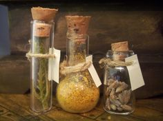 Miniature Beakers with Biological Specimens by LDelaney on Etsy, $10.00