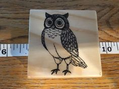 Owl Rubber Stamp New Greeting Cards, Scrapbook #Unknown