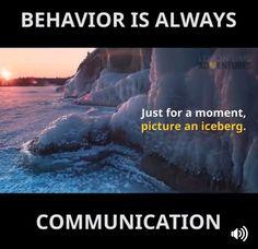 Behavior is always communication