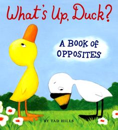 Little siblings of Duck and Goose fans rejoice! The stars of the bestselling <i>Duck
