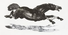 Diane Victor, 4 Horses Baited, Etching, digital printing 105 x (Goodman Gallery) South African Art, Human Art, Equine Art, Drawing Techniques, Mixed Media Art, New Art, Printmaking, Decir No, Digital Prints