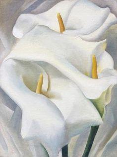 Georgia O'Keeffe ~ Calla Lilies, 1924