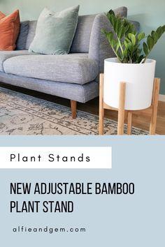 Plant Stands #plant #plantstand #interiorplant #houseplant Outdoor Sofa, Outdoor Furniture, Outdoor Decor, Bamboo Plants, Indoor Planters, Interior Plants, House Plants, Home Decor, Indoor Plants