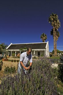 Do a food safari in the town of Prince Albert, which lies 20km down the pike in the shadow of the Cape Fold Mountains called the Swartberge