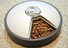 Benefits Of Using Cat Food Dispenser!