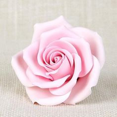 Readymade by hand from gumpaste, this pre-wired Pink Chantilly Rose can be easily placed on cakes and offer a way of decorating hassle free for both professional and amateur decorators. Elegant Flowers, Most Beautiful Flowers, Pretty Flowers, Pretty In Pink, Rare Flowers, Beautiful Pictures, Pink Rose Tattoos, Flower Tattoos, Rose Reference