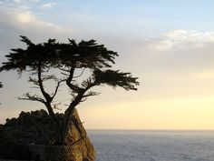 64. i drive through monterey just in time to catch this beautiful view...  #ridecolorfully