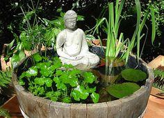 Come coltivare le piante acquatiche Small Water Gardens, Container Water Gardens, Indoor Water Garden, Backyard Water Feature, Small Trees For Garden, Small City Garden, Garden Trees, Garden Pond Design, Urban Garden Design