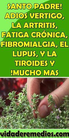 SANTO PADRE! ADIOS #VERTIGO, LA #ARTRITIS, #FATIGA #CRÓNICA, #FIBROMIALGIA, EL #LUPUS, Y LA #TIROIDES Y !MUCHO MAS Herbal Remedies, Home Remedies, Natural Remedies, Health And Wellness, Health Tips, Health Fitness, Clara Berry, Workout For Flat Stomach, Body Hacks