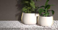 EcoSmart Fire Installation: Stitch Plant Pot Collection, Digital Render