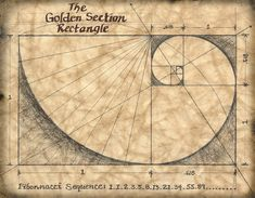 The ancient Greeks said that the Golden Section was a rule of proportion that linked mathematics with beauty. Much of their architecture was designed according to this rule. I also included the Fibonacci Sequence, which directly relates to the Golden Mean.  The Golden Section Mathematics Fibonacci by GeographicsArt on Etsy, $19.50