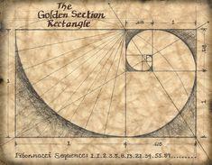 The Golden Section 11 x 14 Art Print Mathematics by GeographicsArt