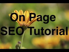 SEO for Photographers: On Page #SEO Tutorial