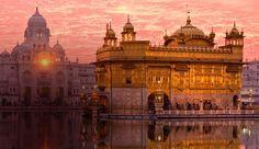 La India. El Templo Dorado