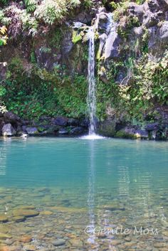 Swimming hole on The Road to Hana-Maui