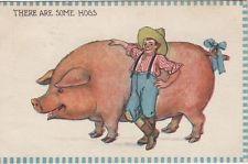 Animals -- PIG / huge HOG, 1913 postcard