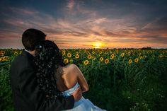 Sunset wedding couple