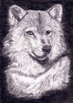 'Wilder Wolf' von Susanne Edele bei artflakes.com als Poster oder Kunstdruck $16.63