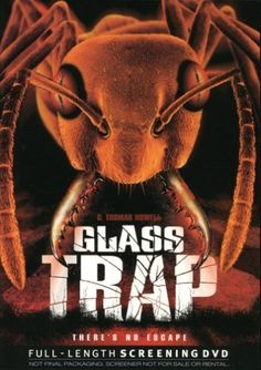 Glass Trap 2005