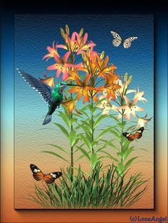 flowers, birds, and butterflies