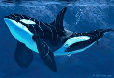 """""""Going back to basics. (I used to paint and draw nothing but whales and dolphins six years ago.) An Orca glides by a cliff face, where it plunges into the ocean creating a vast wall of stone. Underwater Creatures, Ocean Creatures, Orcas, Orca Kunst, Orca Art, Animals Beautiful, Cute Animals, Save The Whales, Killer Whales"""