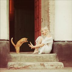 I love cat!