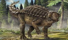 Kunbarrasaurus dinosaur discovered in Australia | Daily Mail Online